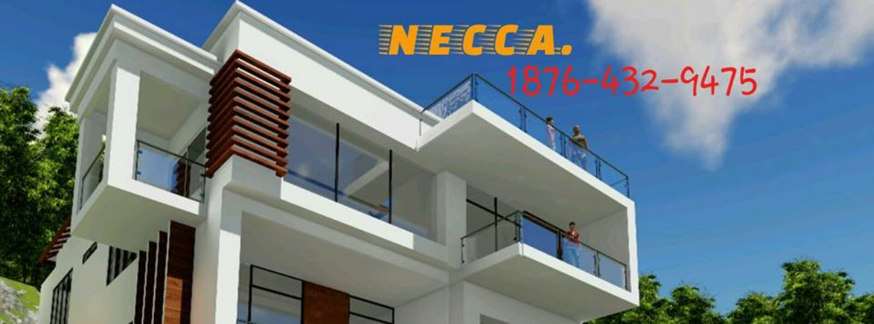 N.E.C.C.A. JAMAICA DESIGN & CONSTRUCTION COMPANY LIMITED
